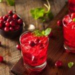 Rezept Terpentin Cranberry-Chili-Likör mit Wild Berry